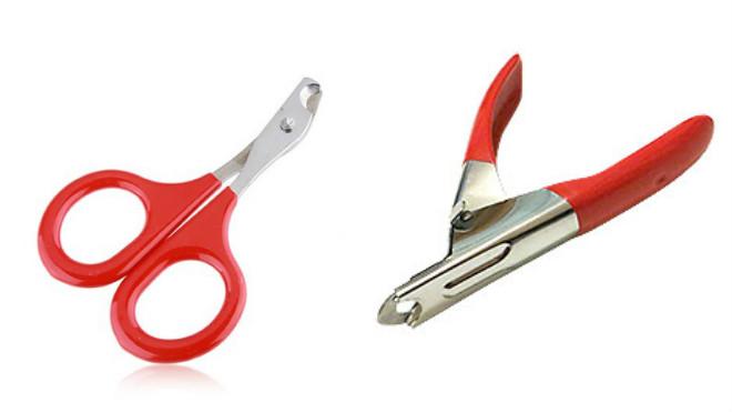 Инструмент для подстригание когтей у кошек